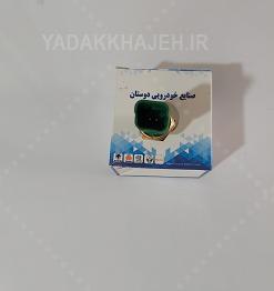 (2) مهره (فشنگی) آب پژو 206 کله سبز دوفیش